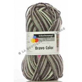Bravo Color Vison